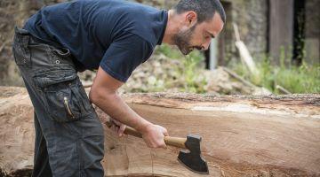 assocation des hommes et des arbres