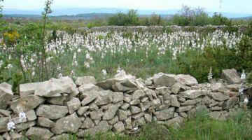 Architecture de pierre sèche